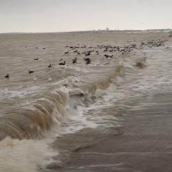 Daisy wütet an der Ostsee